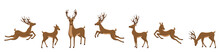 Set Of Deers Isolated. Sika De...
