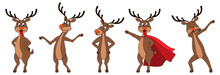 Set Cartoons Deers In Different Poses, Reindeers Characters