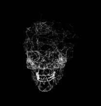 Skull Made In Polygons Plexus,...