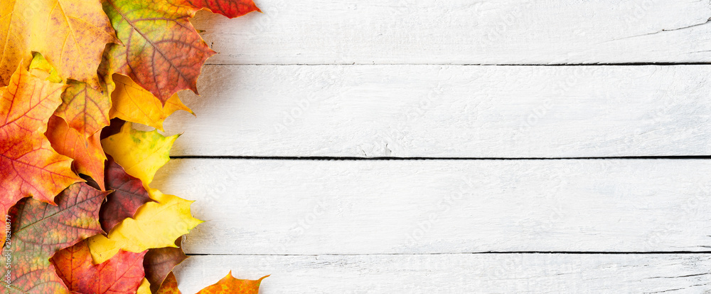 Fototapety, obrazy: Autumn leaves on white wooden table with copyspace. Flat lay. Banner