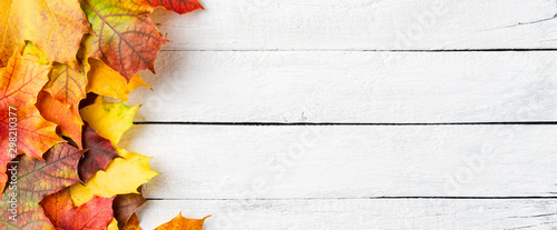 Fototapeta Autumn leaves on white wooden table with copyspace. Flat lay. Banner obraz