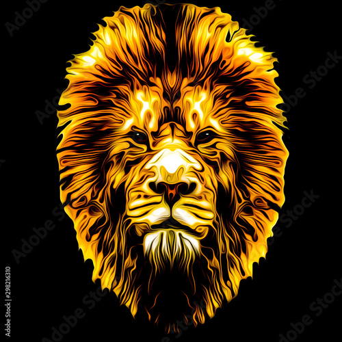 Lion head colorful illustration on white background