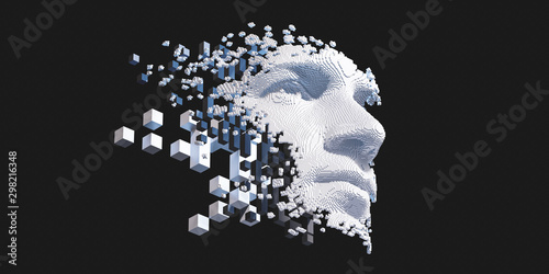 Pinturas sobre lienzo  Abstract digital human face