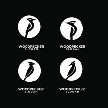 Set Woodpecker With Spotted Black Circle Bird Logo Icon Design Template Vector