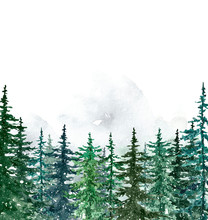 Watercolor Winter Pine Trees F...