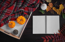 Planning To Do List. Autumn Mood Composition On A Wooden Table With Pumpkins, Rowan And Leaves. Open Notepad With Pen On Grey Wooden Background