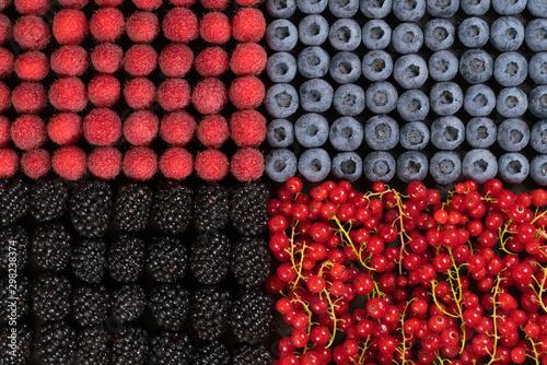 Photo  Fresh raspberries, blackberries, redcurrant and blueberries arranged in one laye