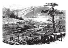 Susquehanna River, Vintage Illustration.