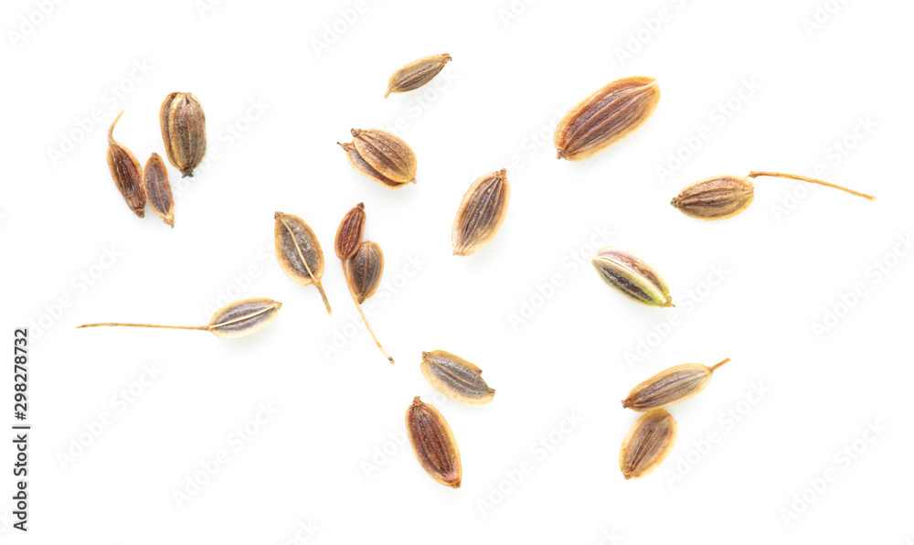 Fototapety, obrazy: Dill seeds isolated on a white background