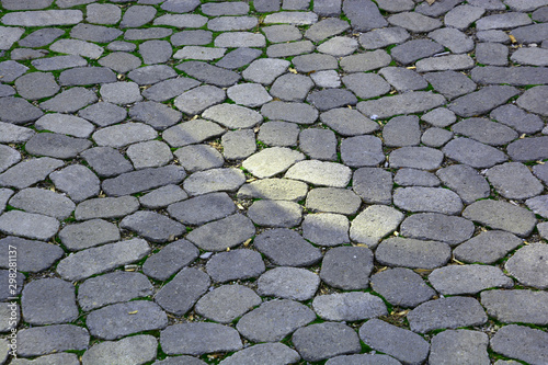 Valokuva  Round and oval concrete stones on walkway with grass between them, walkway with