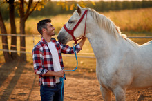 Young Man And Horse. Man Have A Hobby Time, Riding. Horses Concept