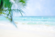 Beautiful View Of  Blue Sea And White Beach With Coconut Leaves.Blur Image.