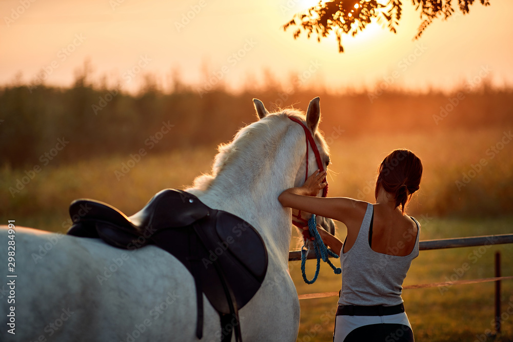 Fototapety, obrazy: Young rider woman with her horse.
