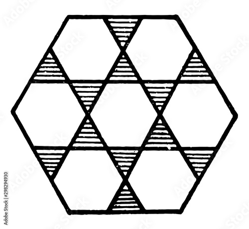 Large Hexagon Design Consisting of 7 Hexagons vintage illustration Wallpaper Mural