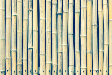 Texture of dry bamboo stems.