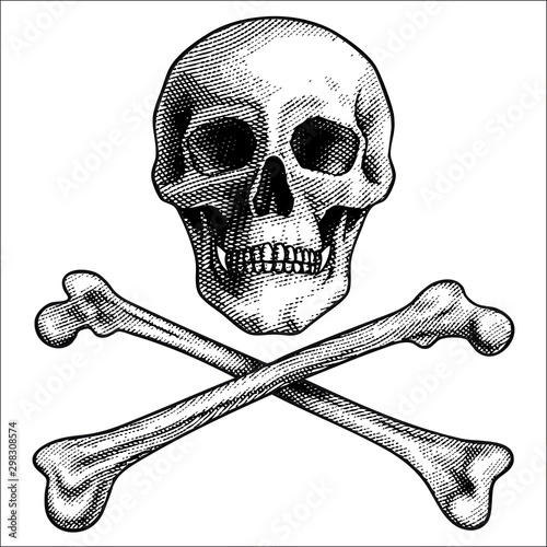 Fotomural  Sketch vector illustration, hand drawn human skull and crossbones isolated on white background