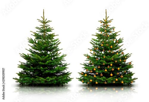 Fényképezés  Glänzend Dekorierter Weihnachtsbaum mit Weihnachtskugeln