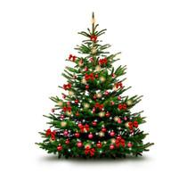 Glänzend Dekorierter Weihnach...