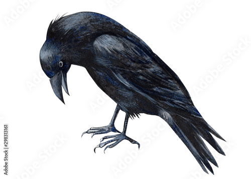 halloween, black raven on an isolated white background, watercolor illustration, Wallpaper Mural