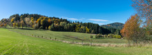 Panoramic Autumn Scenery. Gree...