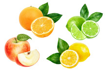 Apple Orange Lemon Lime Set Composition Watercolor Isolated On White Background