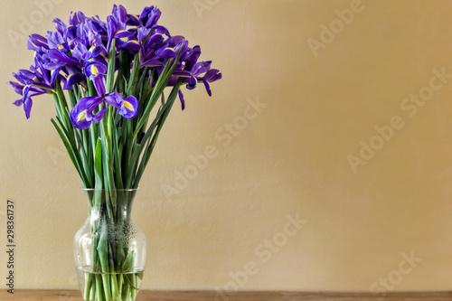 Irises in Vase - 298361737