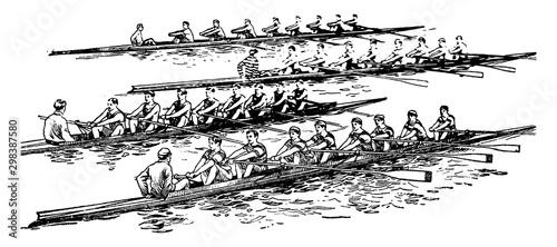 Fototapeta Group rowing vintage illustration.