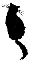 The Silhouette Of A Sitting Cat, Vintage Illustration