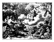 The Creation Of The World - Adam And Eve, Animals, Plants, Vintage Illustration.