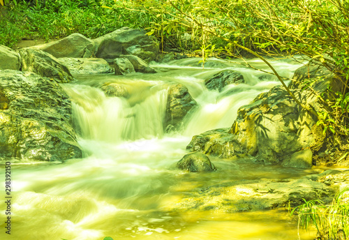 Wall Murals Yellow Flowing water and sun light
