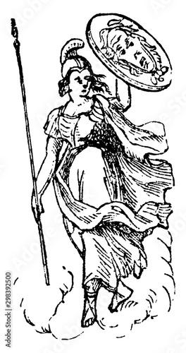 Cuadros en Lienzo Aegis vintage illustration.