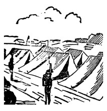 Camping Vintage Illustration.