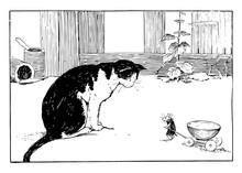 Cat And Mouse, Vintage Illustr...
