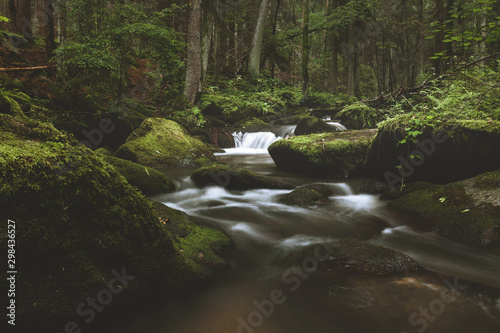 Fototapeta Dark and moody edit of a little creek in a magical fantasy forest in bavaria