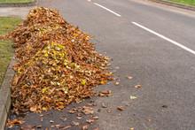 Pile Of Raked Leaves On A Str...