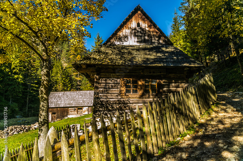 Old wooden cottage in autumn in a beautiful forest setting. Country Slovakia