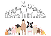 Farm Animals In A Row, Paws Ar...