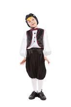 Little Cute Boy In A Penguin Costume