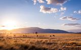 Fototapeta Sawanna - Sunset at savannah plains