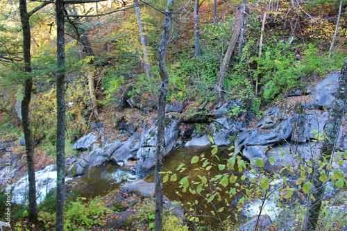 La pose en embrasure Rivière de la forêt river in the forest