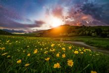 Beautiful Sunset Landscape, Ye...