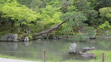 Japan, Kyoto Garden, Temple, H...