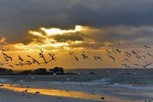 Coucher De Soleil Sur La Mer En Bretagne. France
