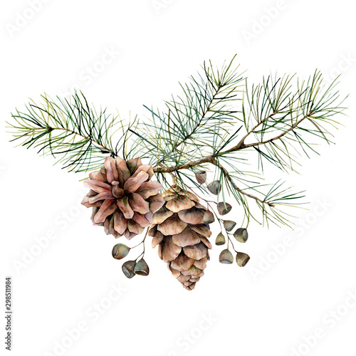 Obraz Watercolor botanical set with pine branches, cones and seeds. Hand painted winter holiday plants isolated on white background. Floral illustration for design, print, fabric or background. - fototapety do salonu