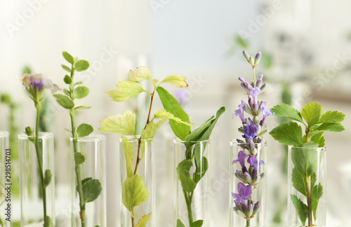 Papiers peints Vegetal Closeup view of test tubes with different plants on blurred background