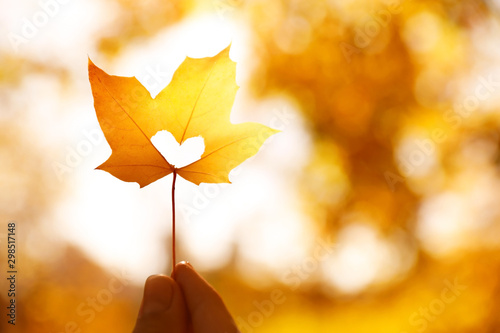 Obraz Woman holding sunlit leaf with heart shaped hole outdoors, closeup. Autumn season - fototapety do salonu