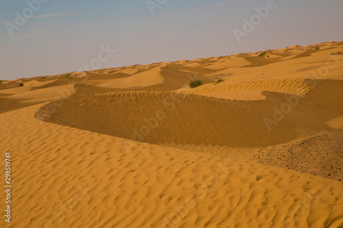 Yellow and fine sand dune in the desert in Tunisia.