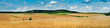 canvas print picture - big panoramic view of landscape of wheat field, ears and yellow and green hills