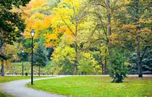 Olorful Autumn Landscape At Vi...