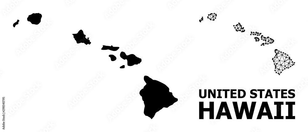Fototapeta Solid and Mesh Map of Hawaii State